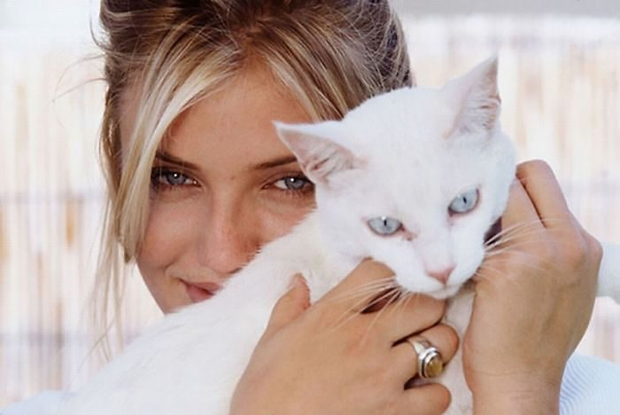 10+ Famous People And Their Cats
