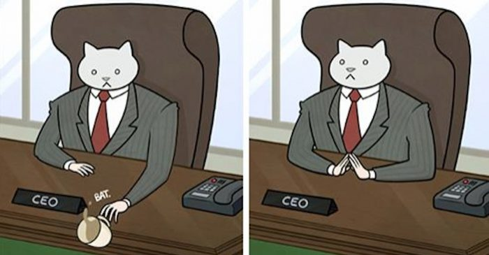 What If Your Boss Would Be A Cat?
