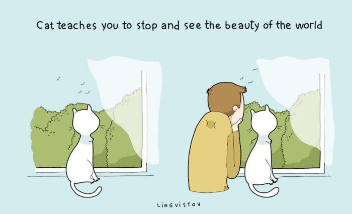 11 Benefits Of Having A Cat