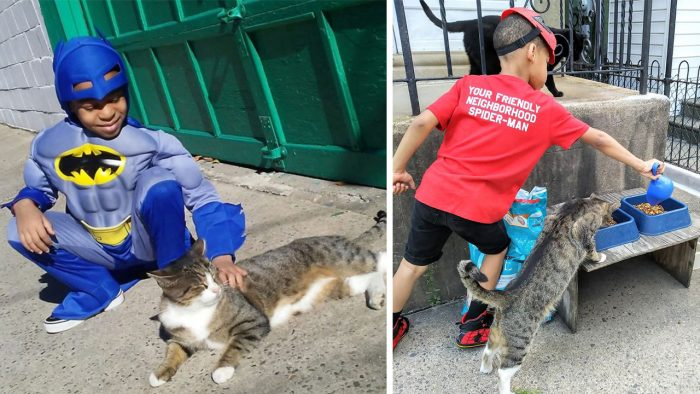 Catman – The 5-Year-Old Superhero That Helps Homeless Cats