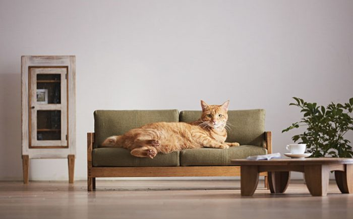 Japanese Artist Creates Miniature Cat Furniture So You Can Please Your Master