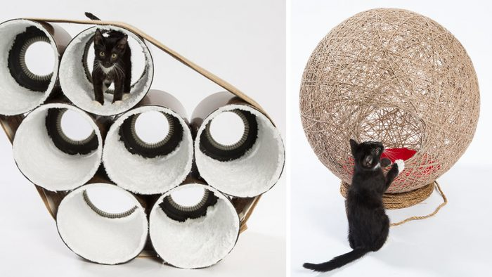 Architects Create Amazing Homes For Cats To Raise Money In Order To Help Homeless Cats