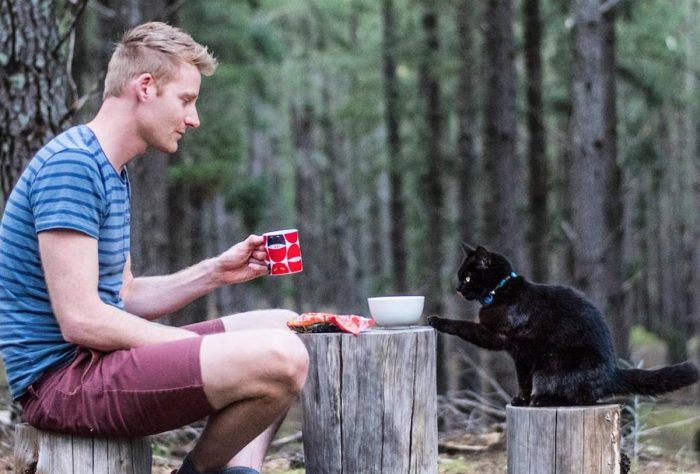 This Man Quit His Job And Started To Travel All Around Australia With His Cat Companion Willow