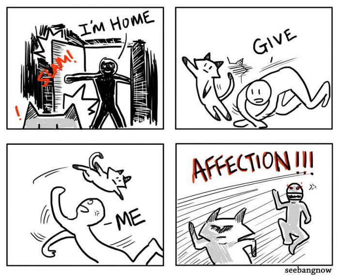 10 Funny Comics That Reveal The Reality Of Having A Cat